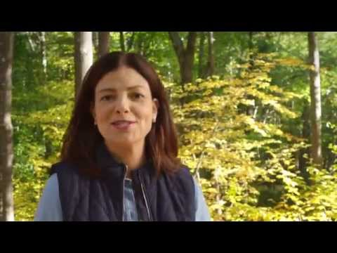 Protecting Our Environment | Kelly Ayotte | New Hampshire