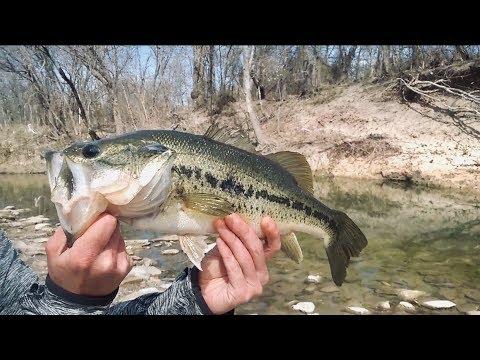 Largemouth Bass Fishing White Rock Creek - My Secret Spot..