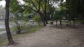 Video 360 from the bench - Sights and Sounds - Jam e Shirin Park - Lahorism download MP3, 3GP, MP4, WEBM, AVI, FLV Agustus 2018