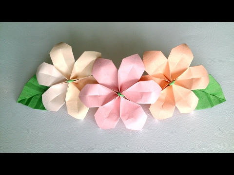 Origami Flower - Сute and Easy Paper Flowers for decoration