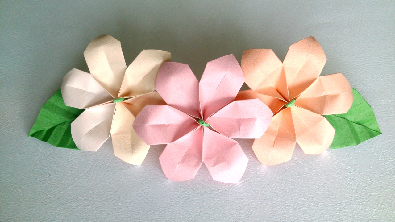 Origami Flower Sute And Easy Paper Flowers For Decoration