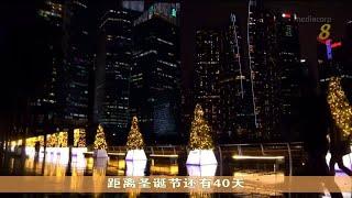 滨海湾将近30棵圣诞树亮灯 为新加坡援人协会等机构筹款 - YouTube