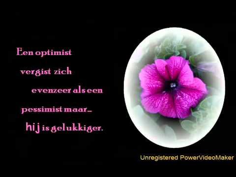 mooie bloemen spreuken Explore Video's Mooie bloemen met wijsheden op Netlog   YouTube mooie bloemen spreuken