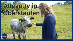 allgäu.tv in Oberstaufen - 06.Juni 2020