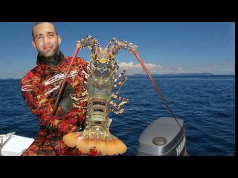 Spearfishing in South Pacific New Caledonia 01 2017