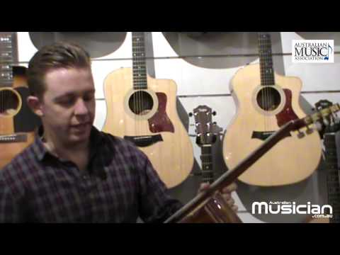 Entry Level Guitar  Intro to acoustic guitars Nylon String