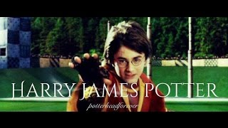 Harry James Potter || A tribute to Harry