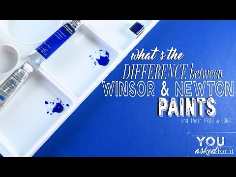 Advantages and Disadvantages of Winsor and Newton Paints?