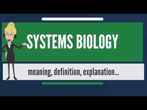 What is SYSTEMS BIOLOGY? What does SYSTEMS BIOLOGY mean? SYSTEMS BIOLOGY meaning & explanation