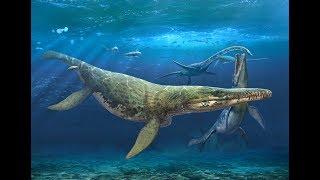 How Plesiosaurs Swam
