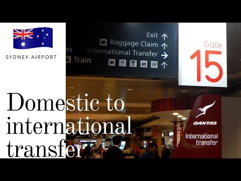 How To Transfer Terminals At Sydney Airport | SYD Domestic To International