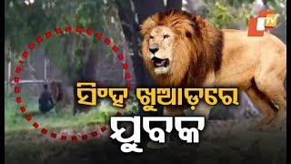 SHOCKING! Man Enters Lion Enclosure At Delhi Zoo