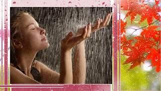 Скачать Я вас Люблю мои Дожди откорект