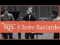 Download Choro Bastardo: Piangerito MP3 song and Music Video