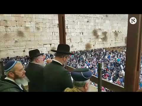 Mass Western Wall Prayers for Rain