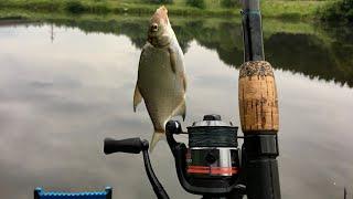 Рыбалка 2020 онлайн. Ловля леща, плотвы, карася и карпа летом в Жару. Фидерная рыбалка стрим