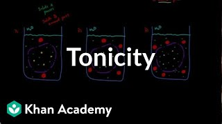 Tonicity - comparing 2 solutions | Lab values and concentrations | Heatlh & Medicine | Khan Academy