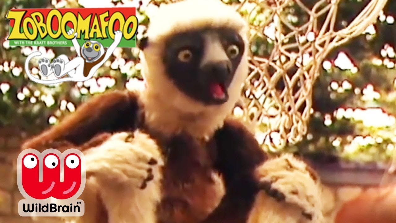 Zoboomafoo full episodes dinosaurs
