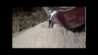 Costing a fire Ant colony with molten Aluminium