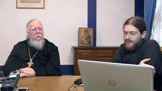 Интернет-встреча с протоиереем Димитрием Смирновым на тему помощи семьям и профилактики абортов