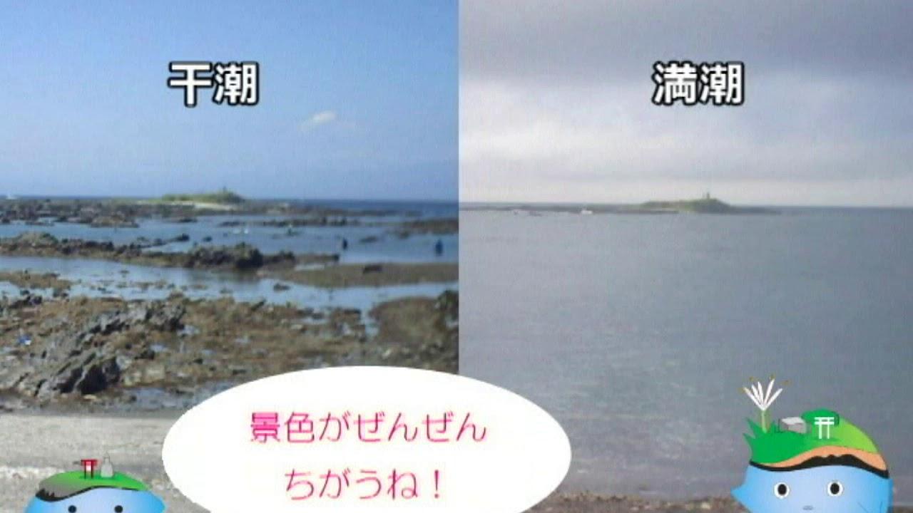 天神島臨海自然教育園~満潮と干潮をくらべてみよう~ - YouTube