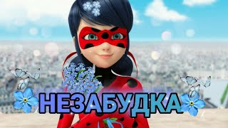 "Леди Баг и Супер Кот / КЛИП / Тима Белорусских ""Незабудка"""