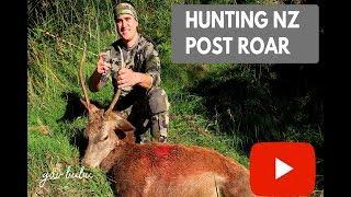 Hunting Nz Red Deer
