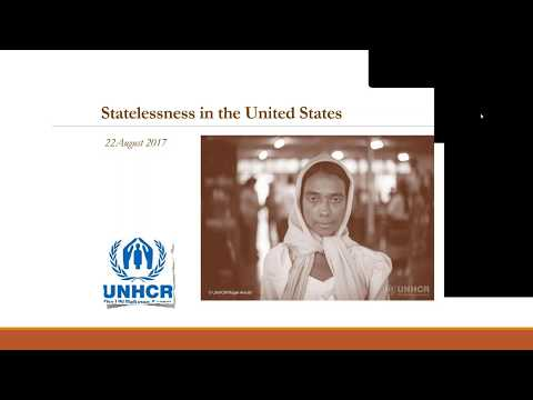 Representing Stateless Persons Before U.S. Immigration Authorities