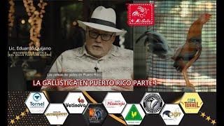GALLISTICA EN PUERTO RICO PARTE 1
