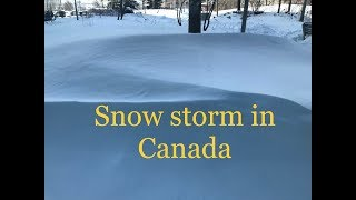 Snow storm in Canada (Greater Toronto Area)