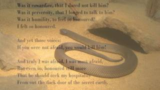 Snake by D H Lawrence (read by Tom O'Bedlam)