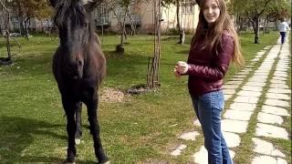 Жизнь в Абхазии сегодня