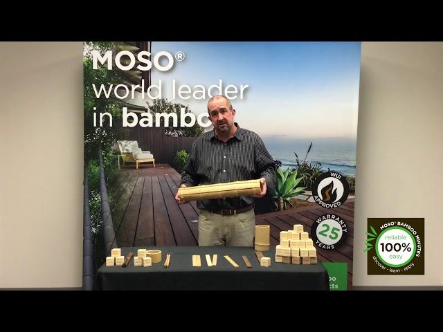 MOSO Minutes | Episode 2 - Industrialisation