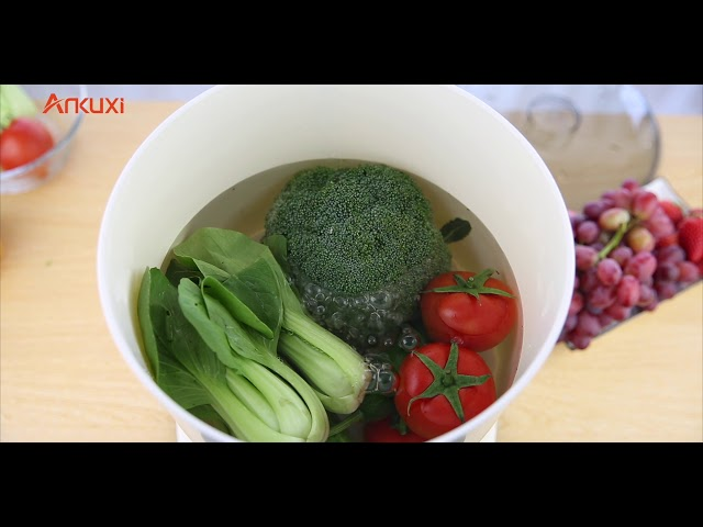 Ankuxi Fruits & Vegetables Detoxifier By Sarita Chadha
