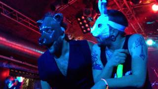 The Bunny The Bear - Prelude to Pregnancy + Aisle (live at Matrix 2011) HD