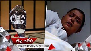 රෙශිලාගේ අවසානය ? | Neela Pabalu | Sirasa TV Thumbnail