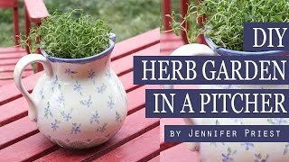Diy Herb Garden In A Pitcher - Thrift Shop Finds #difinds