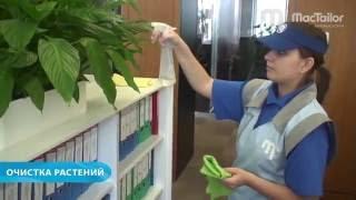 видео уборка офиса клининговой компанией