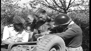 General Mark W Clark along with other officers and 30th Infantry Division discuss...HD Stock Footage