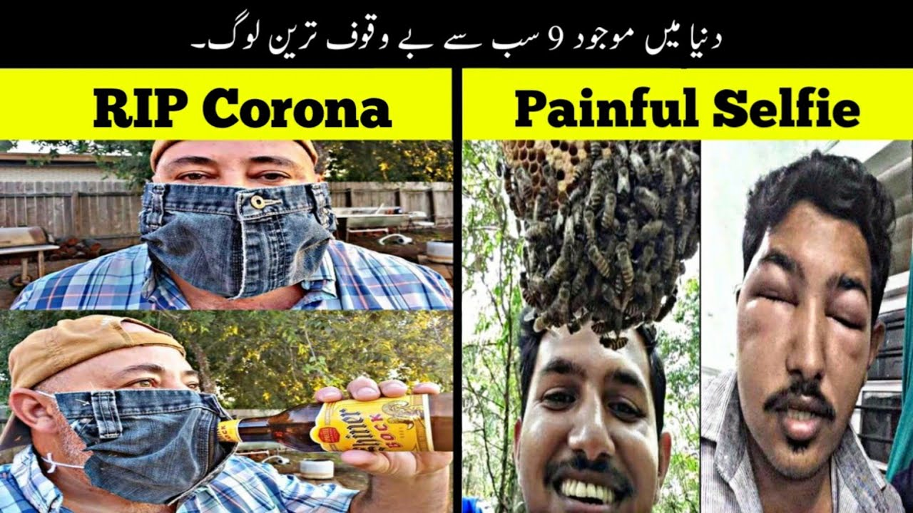 9 Most Stupid People In The World   دنیا کے بے وقوف ترین لوگ   Haider Tv