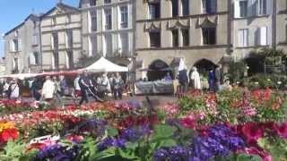Marché aux fleurs de Bazas (Gironde)