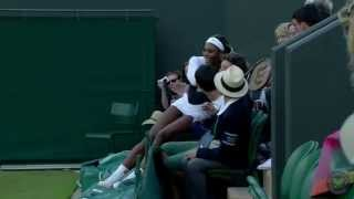 Serena Williams falls into crowd at Wimbledon
