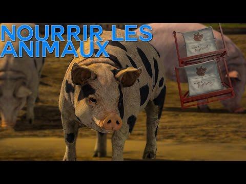TUTORIEL: S'occuper des Animaux sur Farming Simulator 17