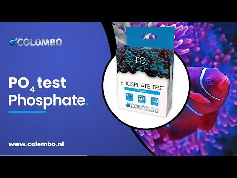 Colombo   Marine Phosphate test
