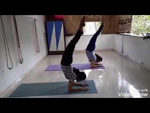 vyaghrasana to vruschikasana practice  youtube