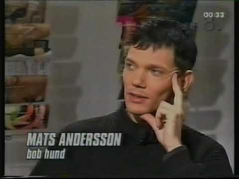 Bob Hund-intervju 1997