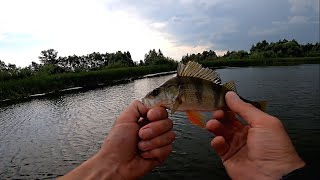 Рыбалка на водохранилище Разведка по окуню и щуке удалась