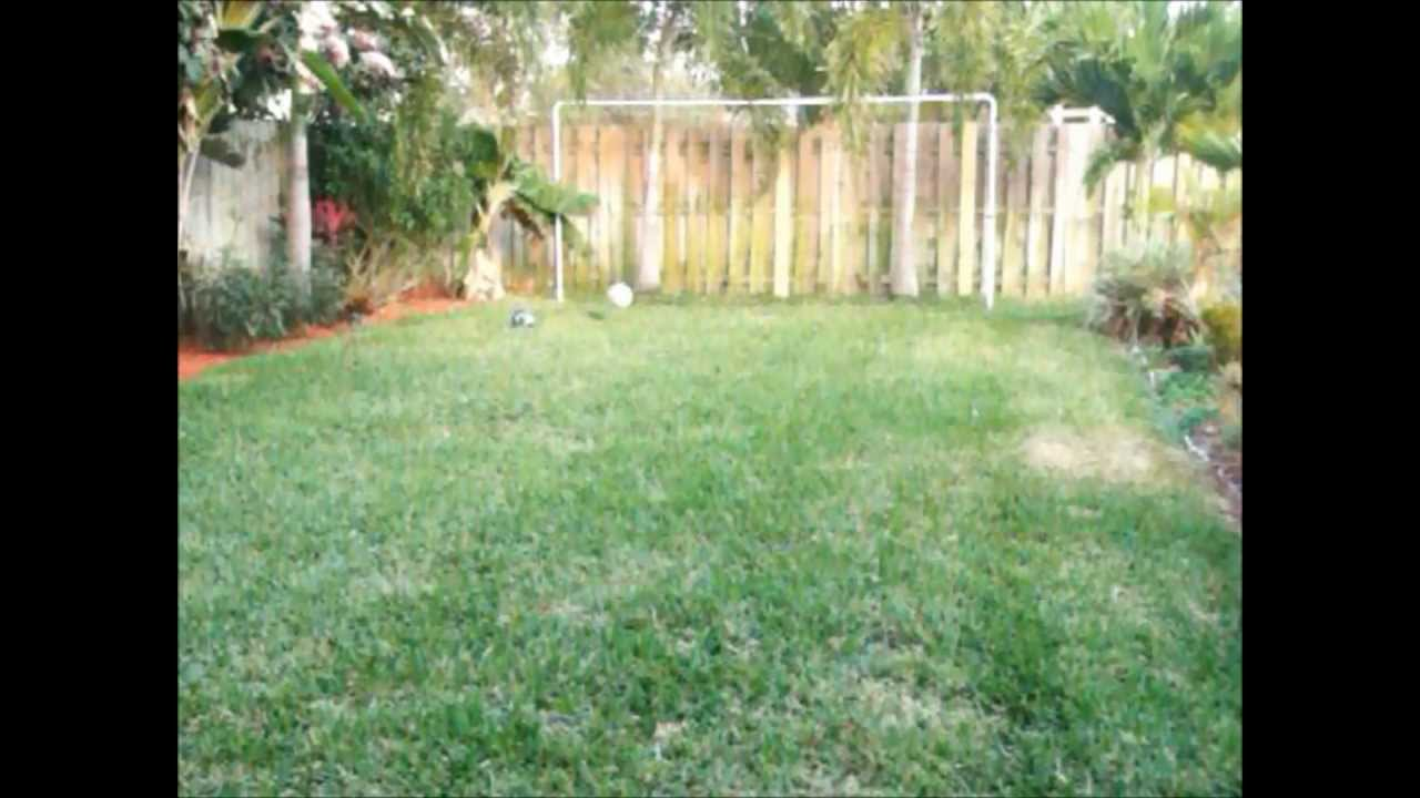 backyard football soccer goals youtube