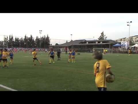 Copa Ideal 2016 - Colegio Domingo Eyzaguirre Sub 12