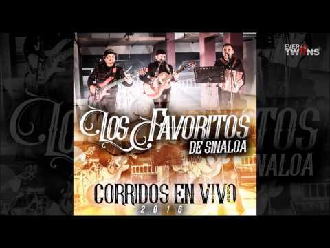 Somos Sinaloenses - Los Favoritos De Sinaloa - (Corridos En Vivo 2016)